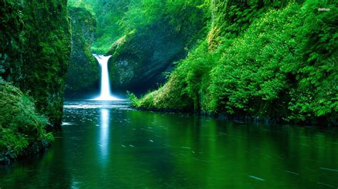 cool nature backgrounds wallpaper