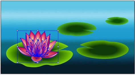 create  beautiful lily pad  adobe illustrator
