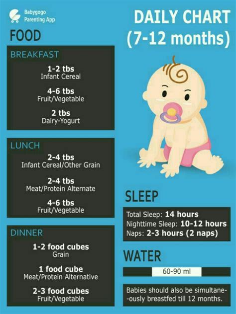month  baby food chart