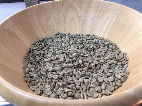 It was discovered in ethiopia, the birthplace of coffee, where it was first found growing wild. Green beans, Panama Geisha, La Esmeralda - best coffee!   How to dry basil, Green beans, Best coffee