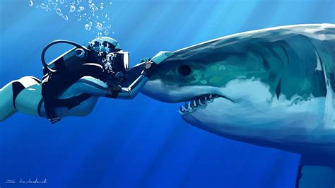 Shark With Diver Hd Wallpaper  Wide Screen Wallpaper