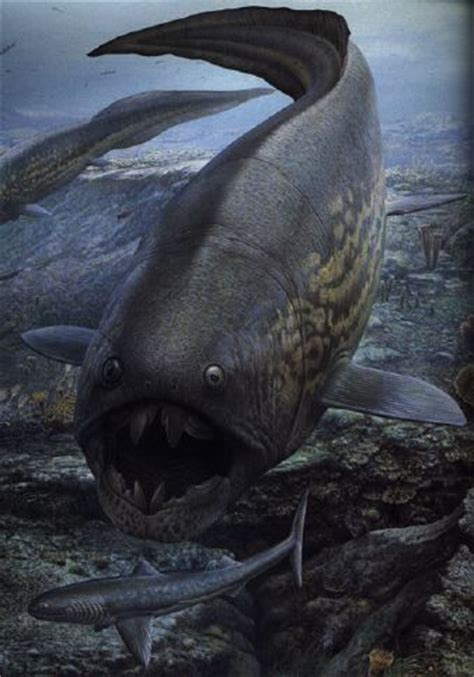 extinct jawed fish   dominate widespread fishes