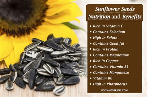 sunflower seeds nutrition and benefits that will make you