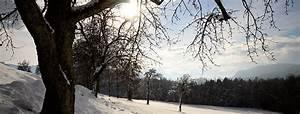 Was Machen Schmetterlinge Im Winter : weblog was machen tiere im winter arge naturschutz ~ Lizthompson.info Haus und Dekorationen