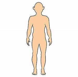 How To Draw A Body Outline