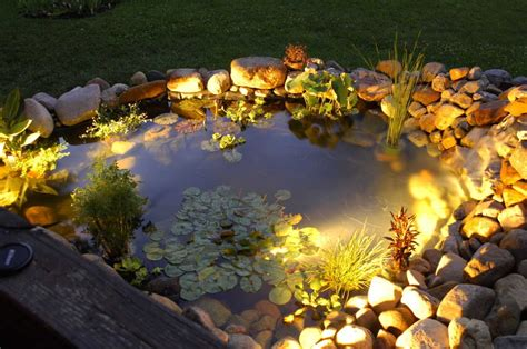 koi pond lighting ideas garden lighting