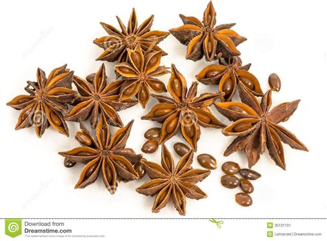 Star Anise Dried Seeds Of The Plant Pimpinella Anisum L