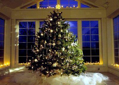 german christmas tree tannenbaum german culture
