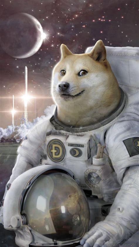 Doge To The Moon Elon - Dogecoin Spikes 29 After Elon Musk ...