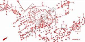 2001 Trx 350 Engine Diagram : front crankcase cover 2 for honda fourtrax rancher 350 ~ A.2002-acura-tl-radio.info Haus und Dekorationen