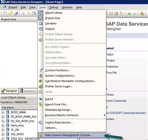 sap business objects data services resume