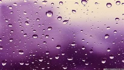 Rain Purple Wallpapers Desktop Romantic Frankenstein Crazy