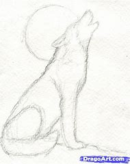 best wolf drawings easy ideas and images on bing find what you