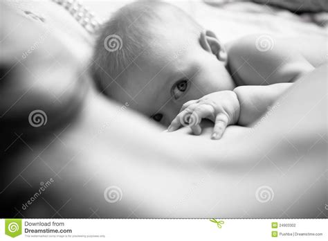 Infant Drinking Mothers Milk Stock Photography Image