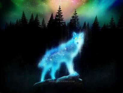 Spirit Wolf Wallpapers Animal Animals Aurora Sage