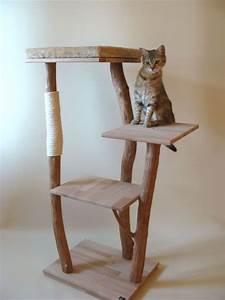 Arbre à Chat Fait Maison : arbre a chat bois naturel ~ Melissatoandfro.com Idées de Décoration