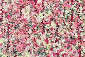 Mur De Fleurs : rouge garance page 12 rouge garance ~ Farleysfitness.com Idées de Décoration