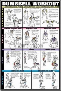 Images Of Upper Back Workout Chart For Men