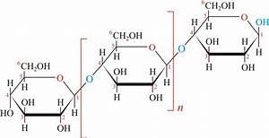 Cellulose   Chemistry Dictionary  U0026 Glossary