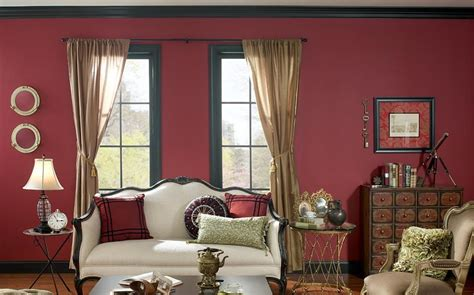 professional design ideas  living room   sofa    colors interior