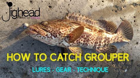 grouper hamour fishing catch rock shore jighead