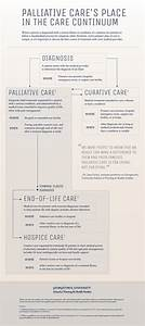 A Deeper Understanding Of Palliative Care