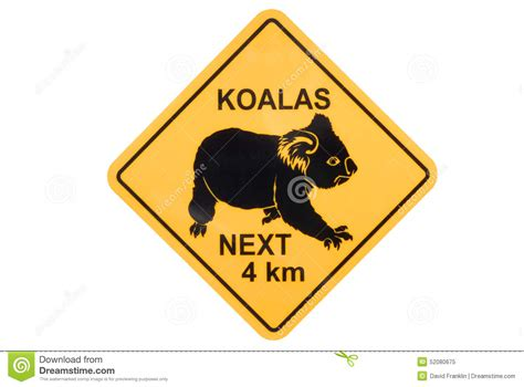 australia australian koala yellow road warning sign