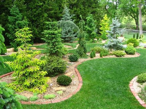 Conifer Garden Design Ideas For Front Yard