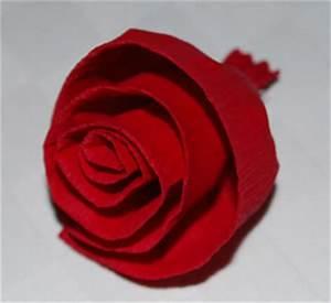 Rosen Aus Seidenpapier : rosen basteln ~ Lizthompson.info Haus und Dekorationen