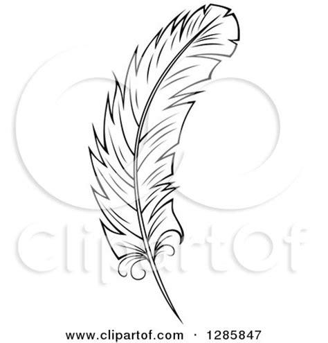 clipart   peacock feather royalty  vector