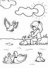 Coloring Ducks Duck Tulamama Farm Printable Fun sketch template