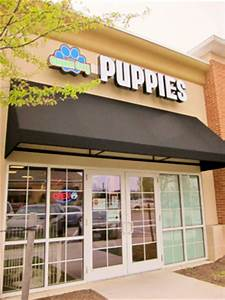 Columbia Upscale Puppy Store Pet Store Howard County