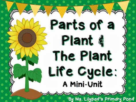 parts   plant  plant life cycle learning