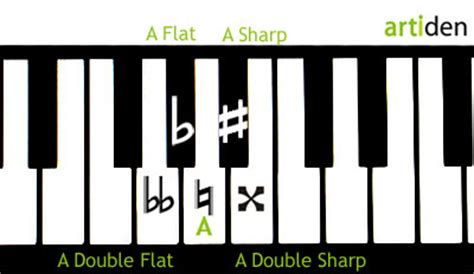 Sometimes they turn into music. Quick Guide to Accidentals - Artiden