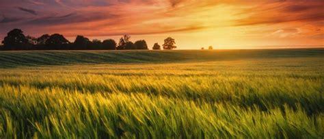 Земельный налог для физических лиц: за что придется заплатить?