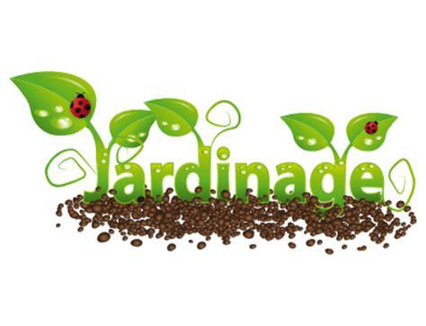 plant de cuisine jardin de ta soeur jardin et jardinage