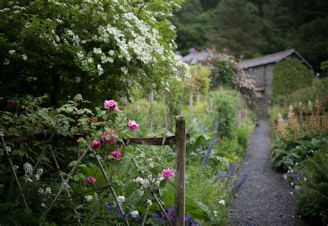 how to make your garden more how to make your garden more eco friendly sykes holiday cottages