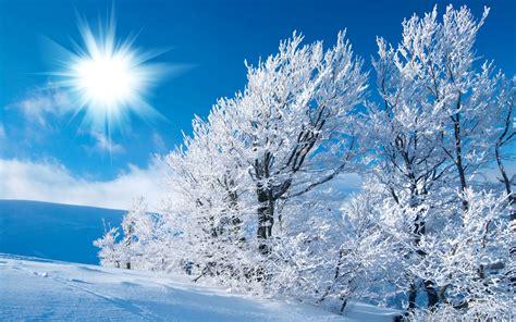 Winterwallpaper Hd