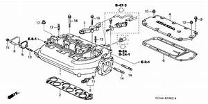 2005 Honda Accord Engine Diagram  Honda  Auto Fuse Box Diagram