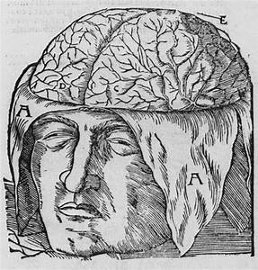 The Role Of The Supernatural In The Discovery Of Eegs