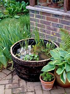 planting a pond in a pot water features for your With katzennetz balkon mit indoor garden kit