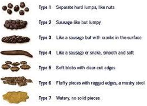 What Does Blood In Stool Indicate - acholic stool things you didn t