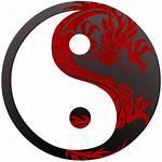 Symbol Yang Dragon Yin Ying Symbols Dragons