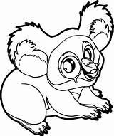Koala Coloring Marsupial Easy Wecoloringpage Animal Printable Sheets Designlooter Ingrahamrobotics sketch template