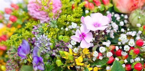 5 Datos curiosos sobre las flores - Blog Oficial ...