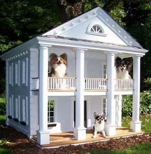 1000 images about doghouse on pinterest With two story dog bed
