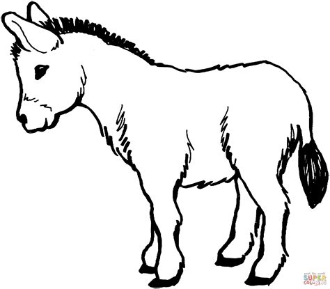 Donkey Clipart Coloring Page Pencil And In Color Donkey