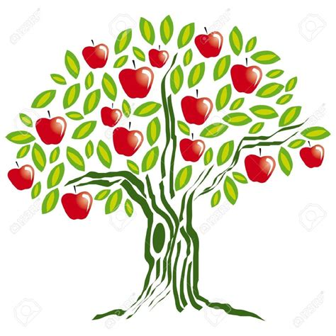 Full Analysis Of Apple Tree Dreams And Meaning