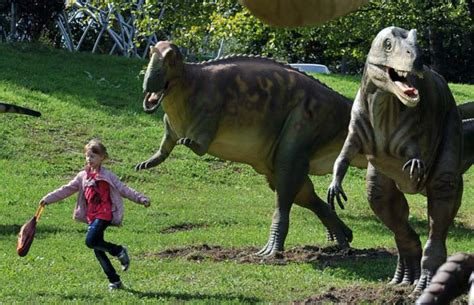 la foto piu bella   dinosauri