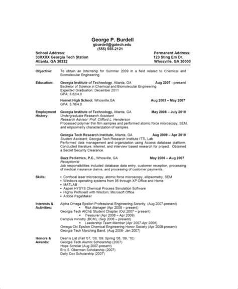 basic resume sample  examples   word